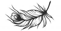 cropped-feather-logo.jpg